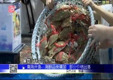 南海开渔:海鲜品类增加 部分价格回落