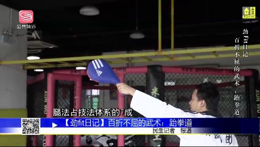 【劲fit日记】百折不屈的武术:跆拳道