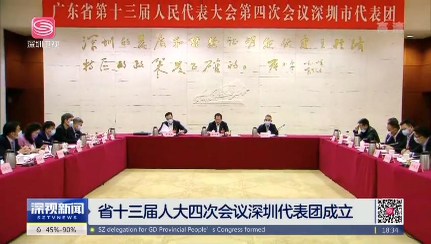 省十三届人大四次会议深圳代表团成立