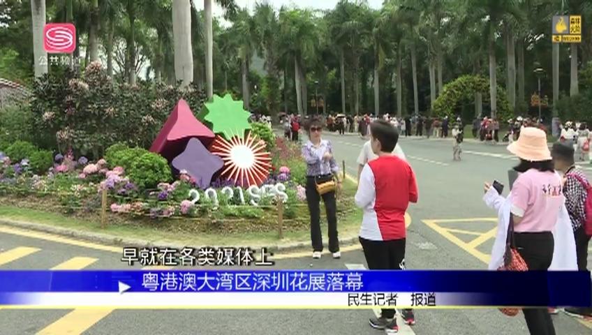 粵港澳大灣區深圳花展落幕