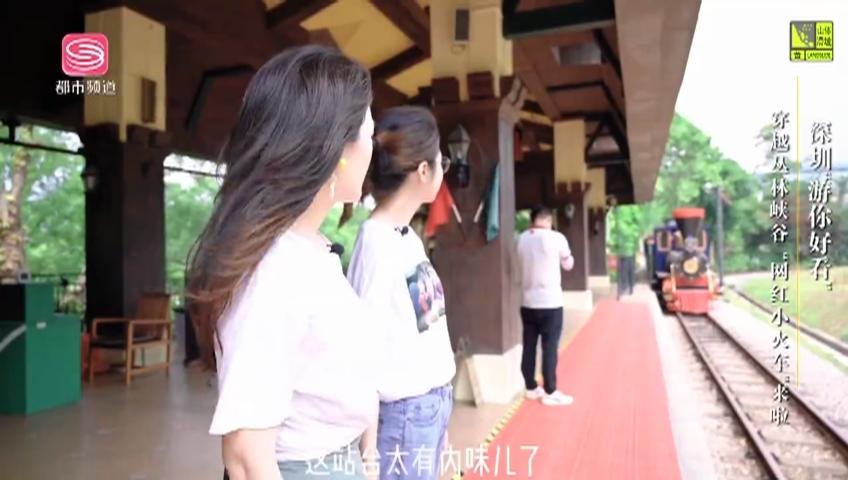 """深圳""""游你好看"""" 穿越丛林峡谷 """"网红小火车""""来啦"""