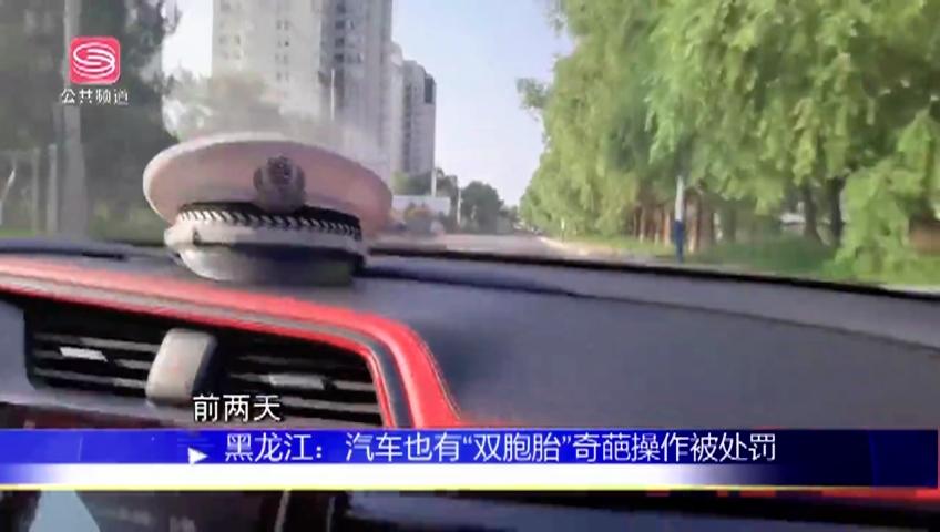 """黑龙江:汽车也有""""双胞胎""""奇葩操作被处罚"""